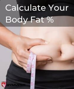 Calculate Your Body Fat %