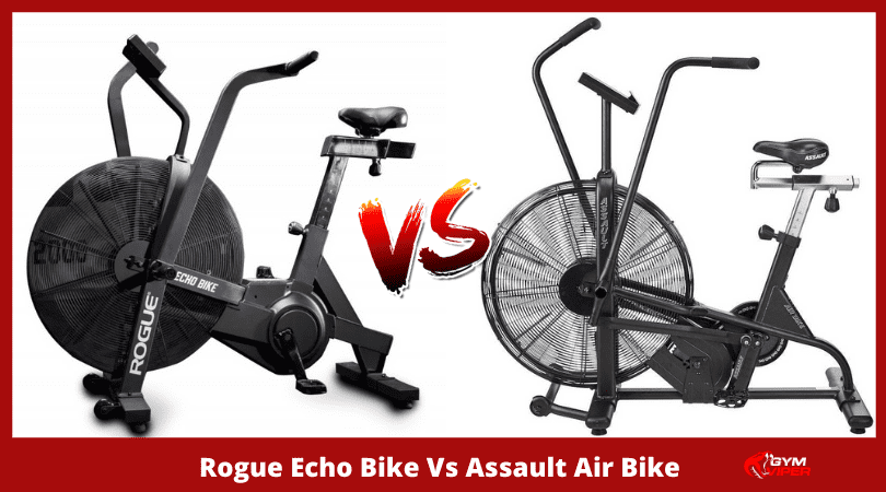 Rogue Echo Bike vs Assault Air Bike